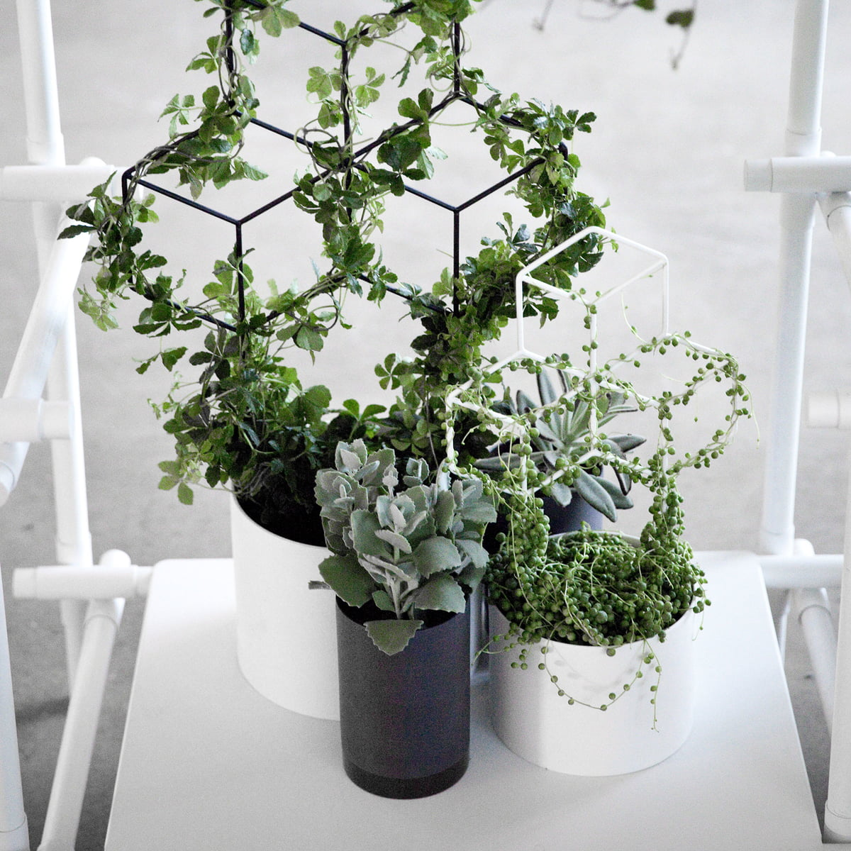 cylindrical blomsterkrukke fra menu i interi rshoppen. Black Bedroom Furniture Sets. Home Design Ideas