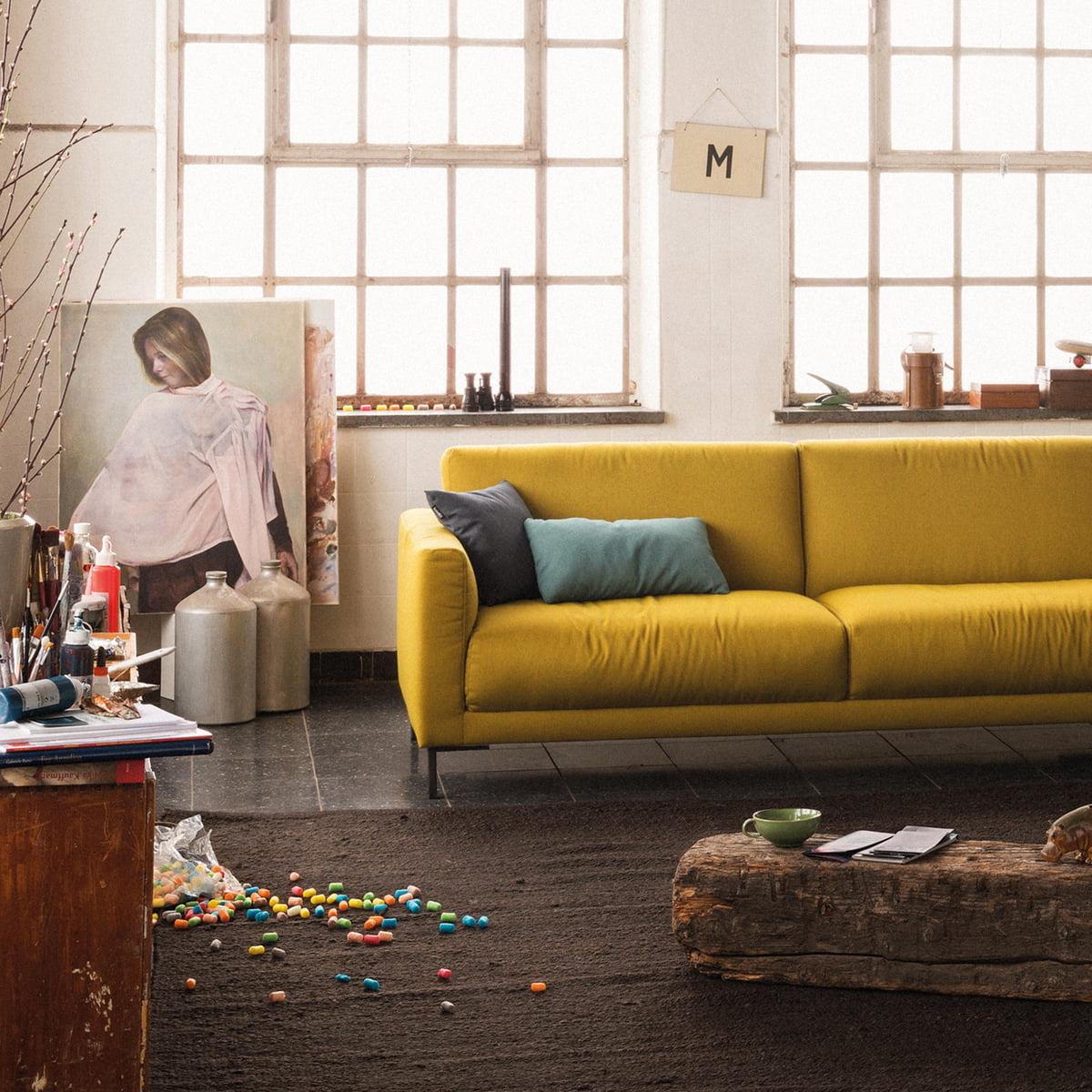 141 hj rnesofa fra freistil connox interi rshop. Black Bedroom Furniture Sets. Home Design Ideas