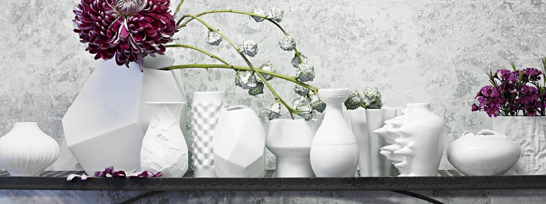 Rosenthal steht für hochwertige Porzellan- und Glas-Produkte mit einem ausgefallenem Design. Tisch-Accessoires, wie die Miniaturvase Fast oder Surface, machten Rosentahl weltweit bekannt.