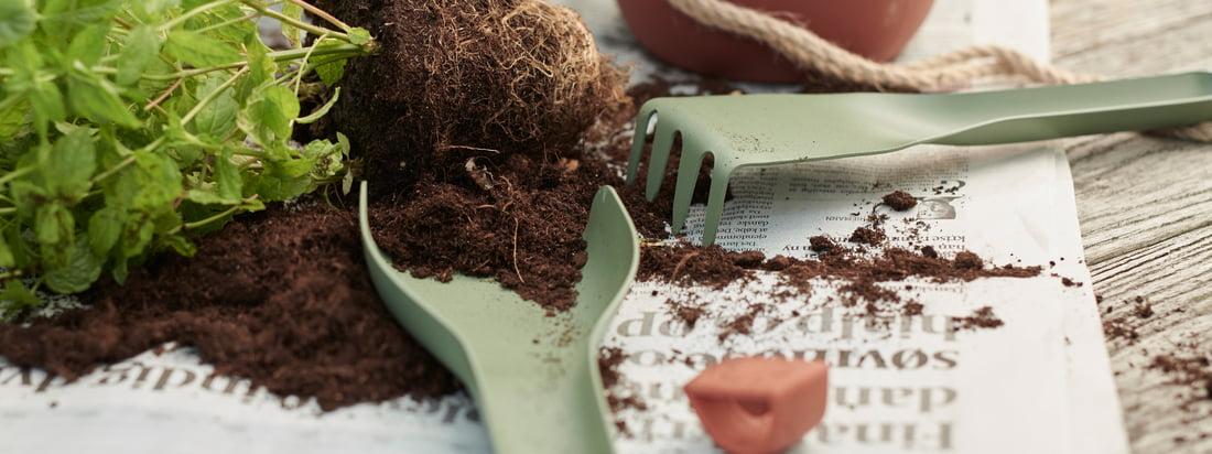 Emneside: Plantning - Rig-Tig af Stelton - Green-It haveværktøj - enkeltbillede - haveværktøj-grøn planteplante