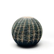 Baleri Italia – Tattoo kaktuspuf