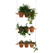 Edition Compagnie – Etcetera plantesystem