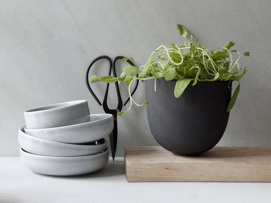 Havearbejde i vindueskarmen er en kæmpe trend: Dyrk dine krydderurter med urtepotten Grow Pot fra Menu. Køkkengrej med stil: de nye Norm skåle fra Menu og køkkensakse fra Hay.