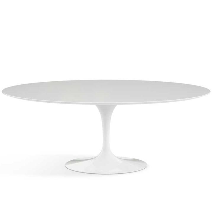 Knoll – Saarinen Tulip spisebord, ovalt