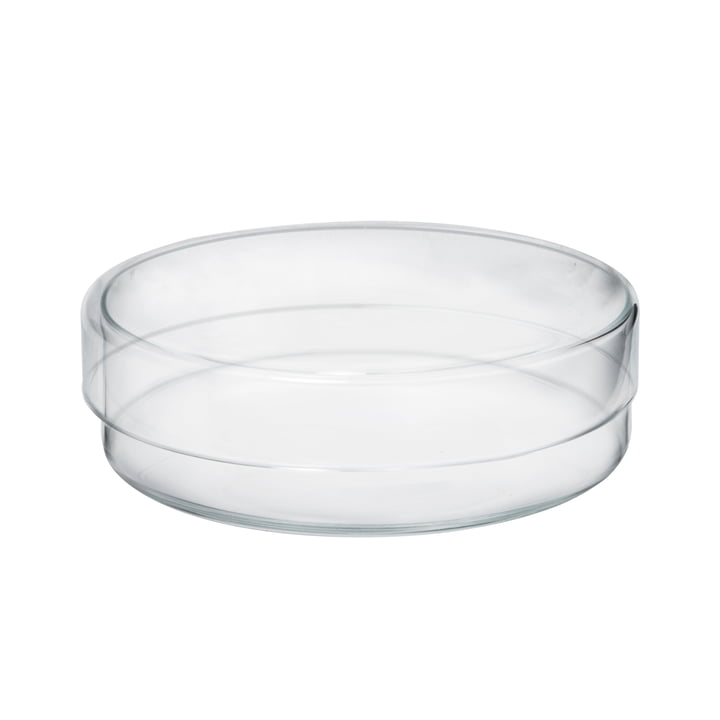 Glasset med låg fra Raumgestalt i flad størrelse