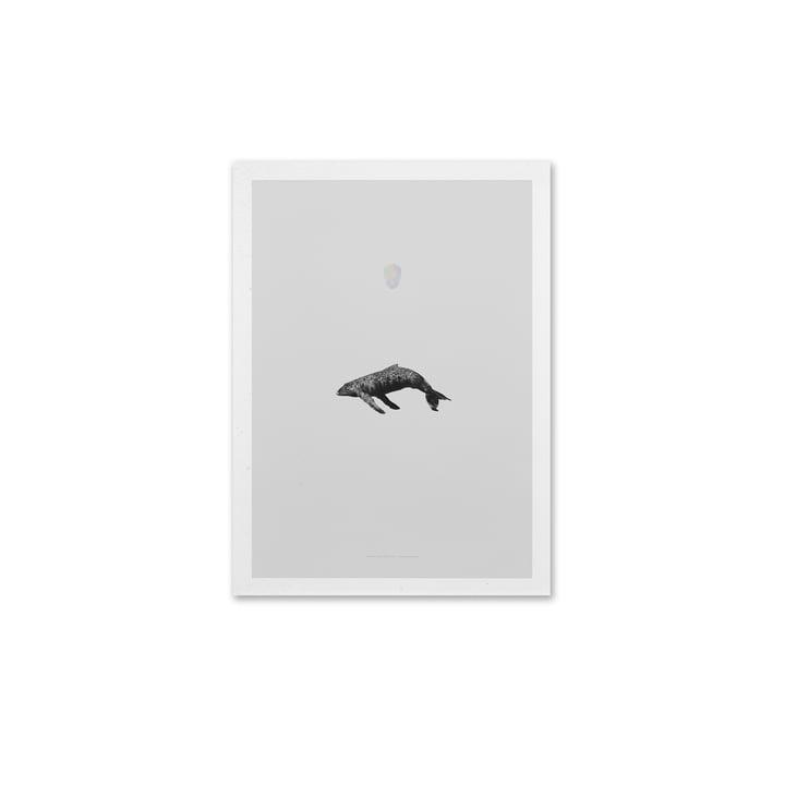 Paper Collective – Whale Reprise, 40 x 30 cm