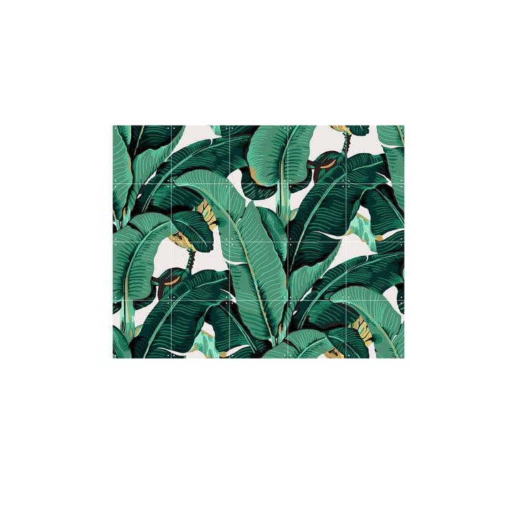 Banana Leaf fra IXXI, 100 x 80 cm