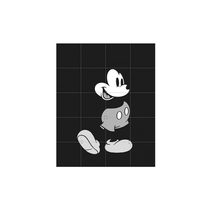 Mickey Mouse (sort/hvid) fra IXXI i 80 x 100 cm