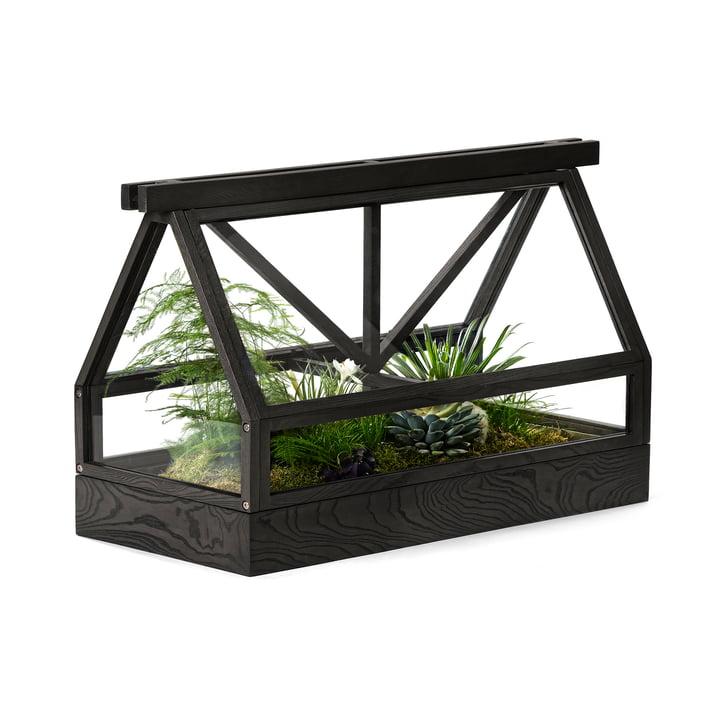 Design House Stockholm - Greenhouse Top
