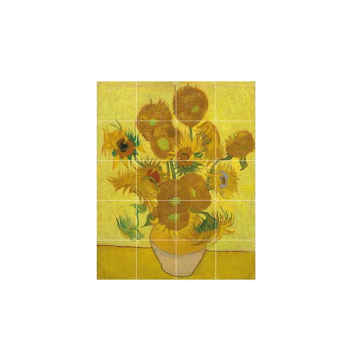 Solsikker (Van Gogh), 80 x 100 cm, fra IXXI