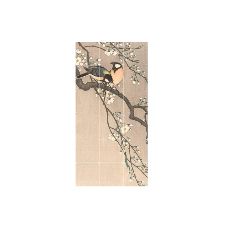 Fugle på en kirsebærgren, (Koson) 100 x 200 cm fra IXXI