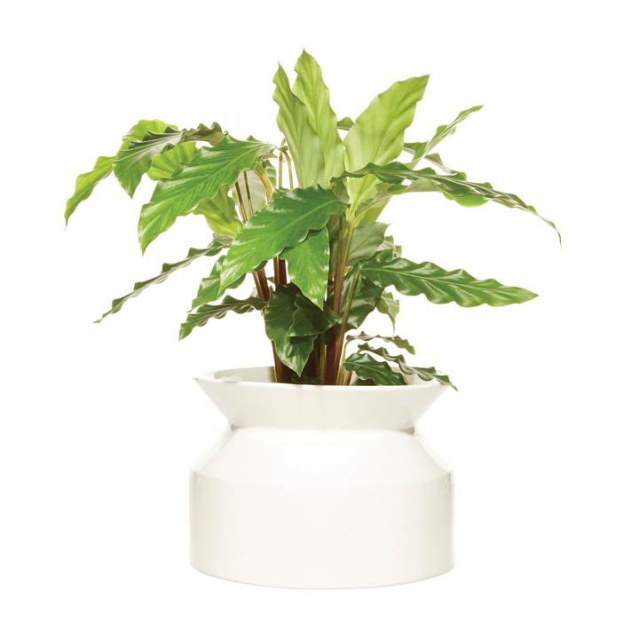 Spool plante pot Medium fra Boskke i hvid