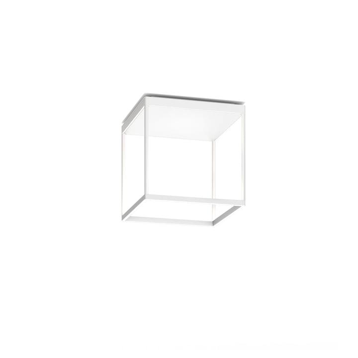 Reflex² 300 M LED loftslampe, 2700 K / 4520 lm, hvidt / tekstureret glas hvidt fra serien.lighting