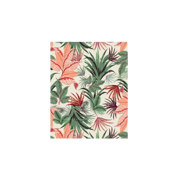 Pink Jungle 80 x 100 cm fra IXXI