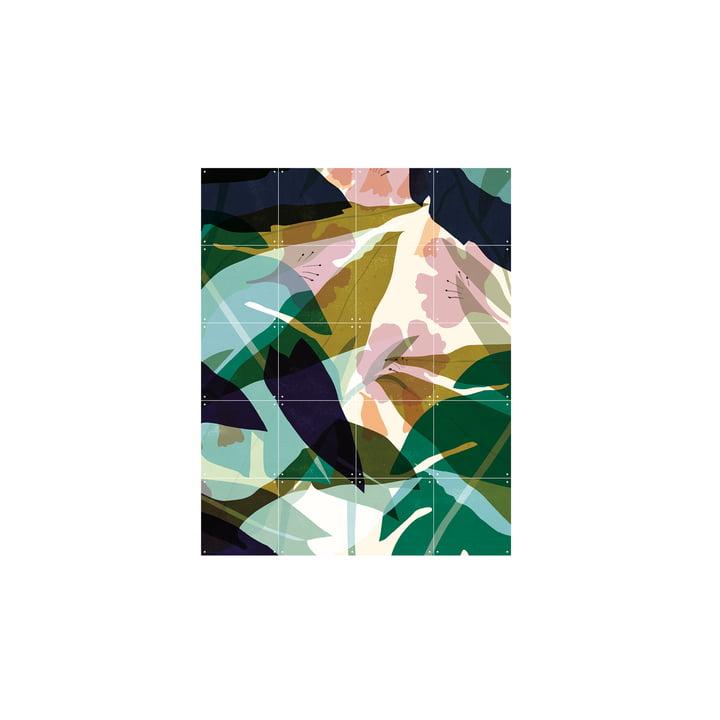 Blade (Lotte Dirks) 80 x 100 cm af IXXI