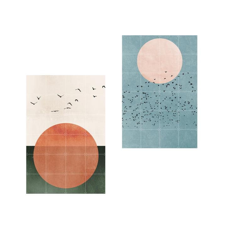2 i 1 Free Souls Fly Away plakat af IXXI i 80 x 120 cm