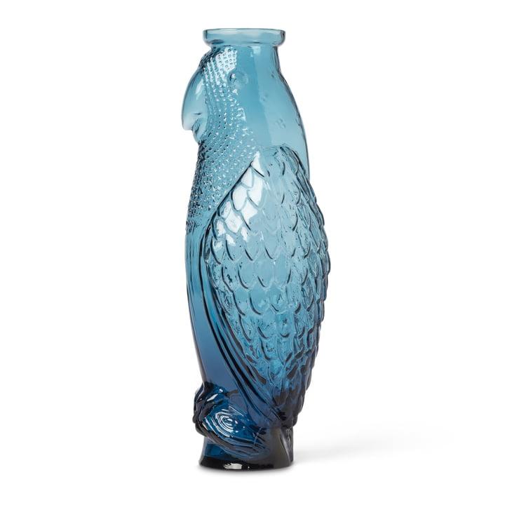 Cockatoo karaffel, blå af Doiy