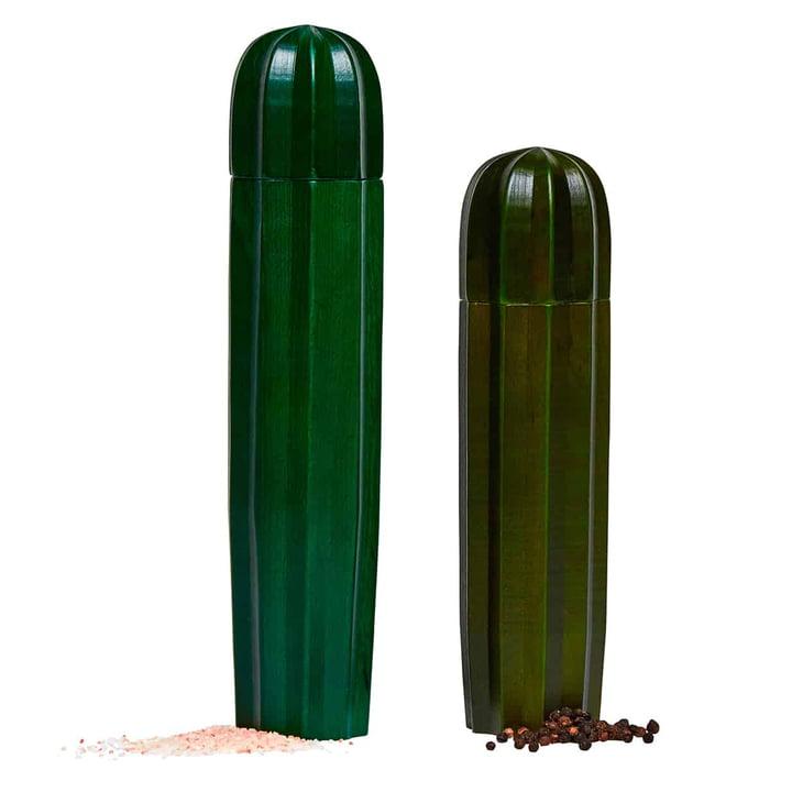 Cacti salt og Doiy (sæt med 2), grøn af Doiy