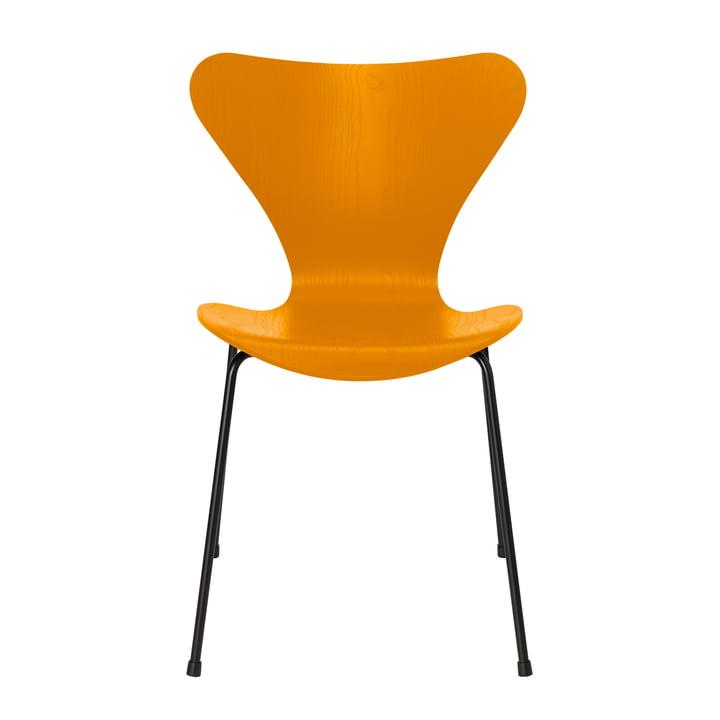 Serie 7 stol af Fritz Hansen i brændt gulfarvet ask / sort ramme