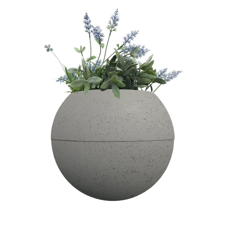 ballcony bloomball med rephorm, rephorm