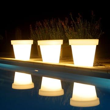 Bloom Pot med belysning i hvid