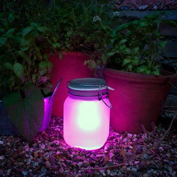 Suck UK – Sun Jar, pink